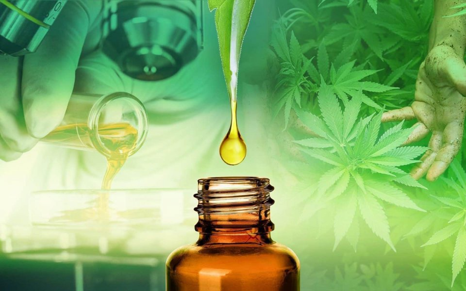 The 8 Most Important Cbd Studies Ever Published Hero