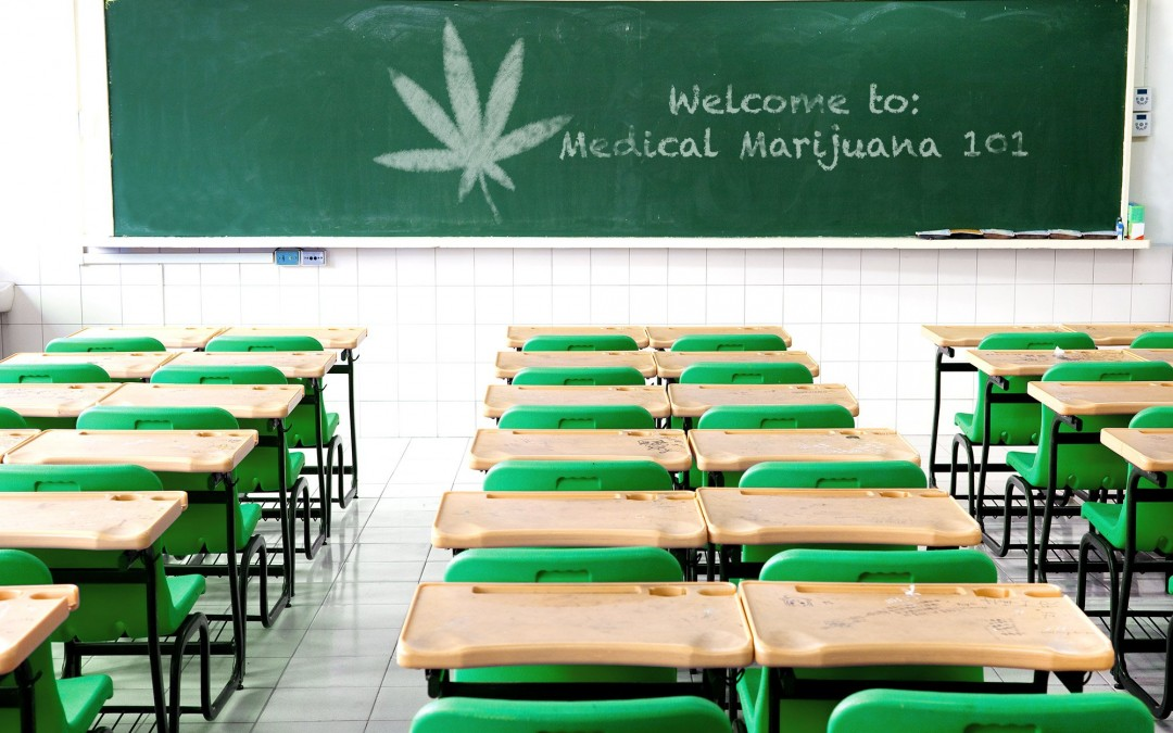 school for marijuana3 1080x675